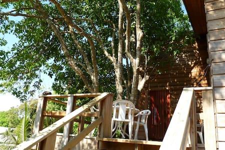 Kenap tree apartment - Lakás