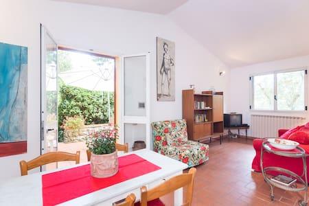 Small villa in the Chianti's hill - Flat