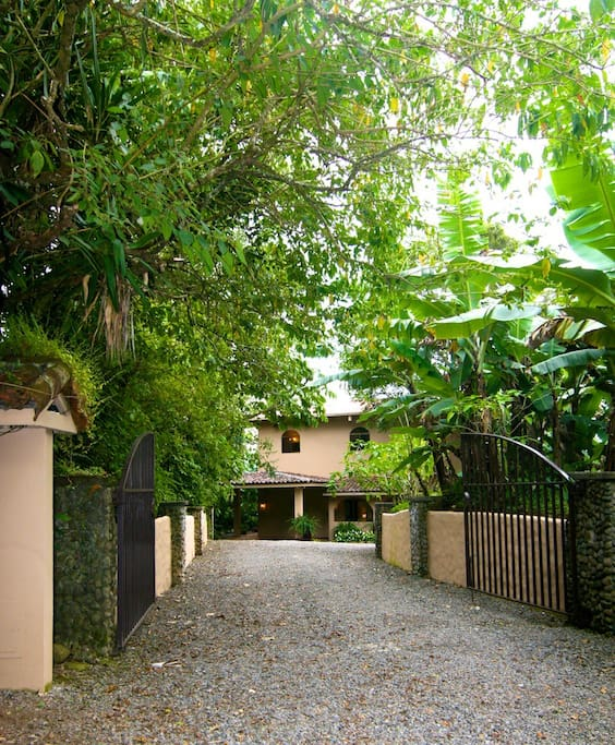 Lush gardens and large trees at the entry of The Hacienda