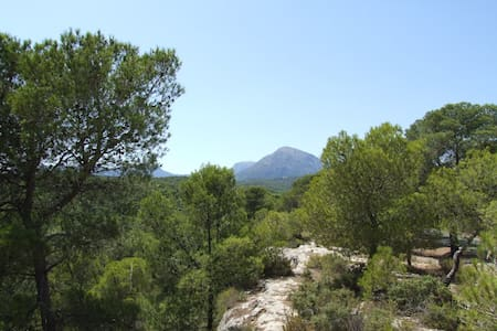 Stunning mountain Views and walks - Ricote