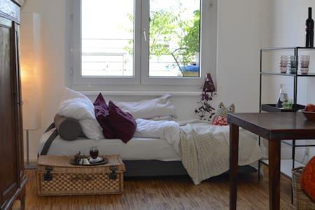 Wien-Zentral-Dachterrassenwohnung - Vienna - Bed & Breakfast
