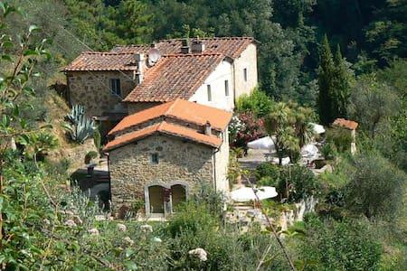 """Toskana """"Paradiso Monte a Pescia"""" - Apartment"""