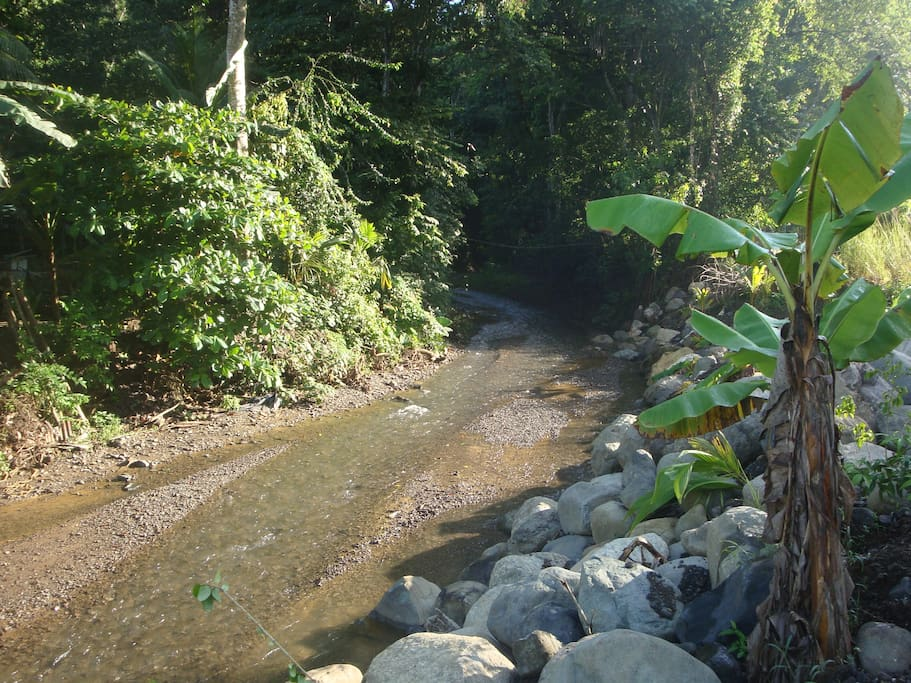 The creek in dry season.