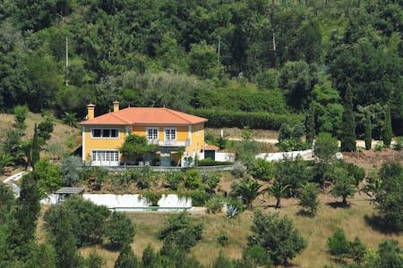 Villa among vineyards and cork oaks - Casa de campo