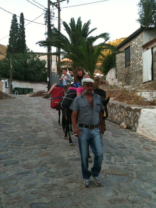"""All transportation by foot or """"by mule/donkey"""", we can book Christos for you."""