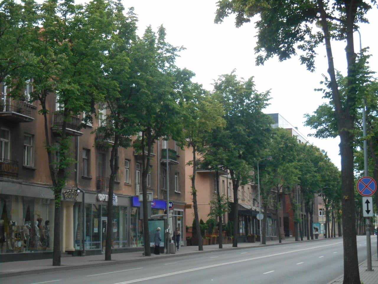 2-Zimmer Wohnung Klaipeda Center