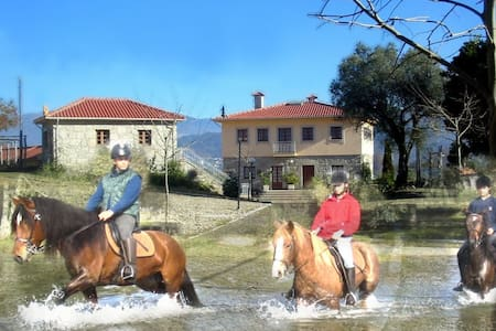 Quinta do Fijo, B&B + Horse Riding