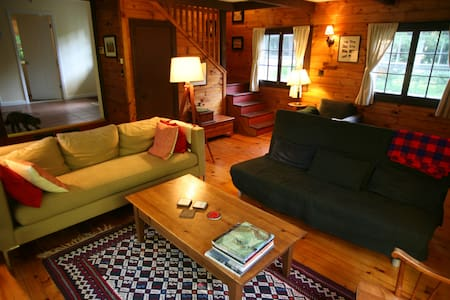 Lakeside Adirondack vacation house - Hadley