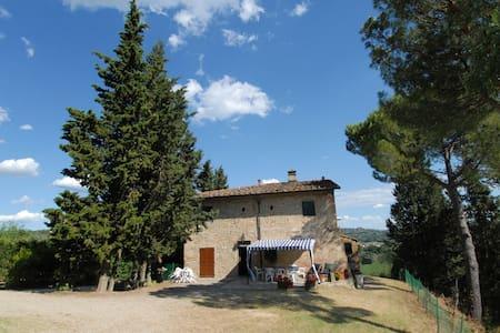 Toscana/Firenze/Ginestruzze - House