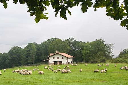 Country House in Baztan (Basque C.) - Appartamento