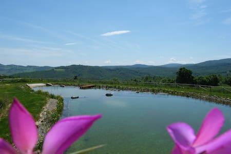 Loft with a view, Tuscany!! - Castelnuovo di Val di Cecina - Loft