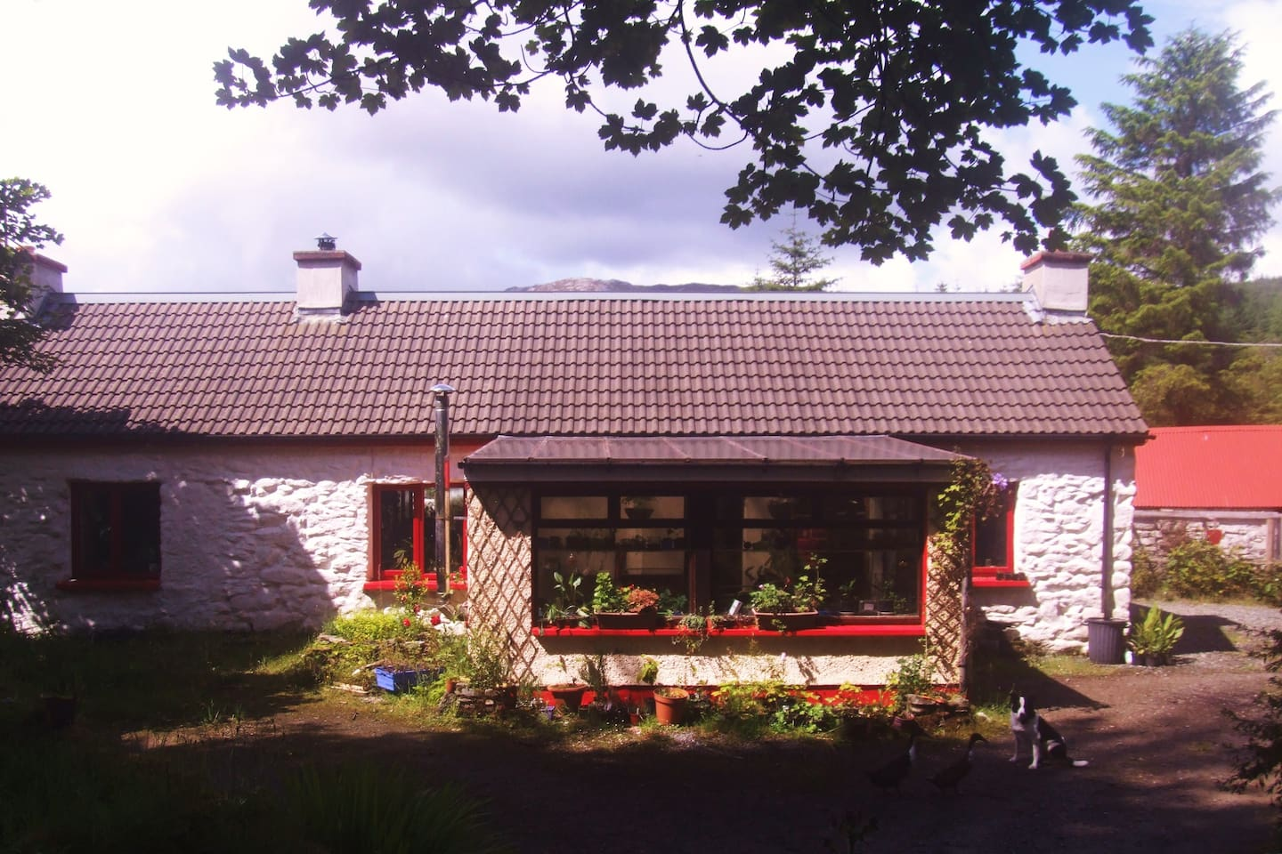 Welcome to our cottage in the hills of Donegal