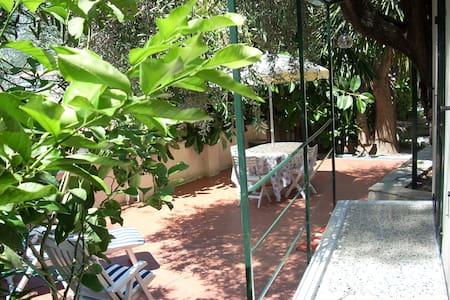 Minicottage con ampio terrazzo e WiFi - House