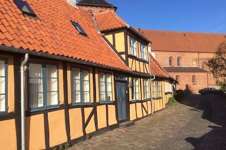 Unikt Bed & Bathtub i Svendborg C - Maison de ville