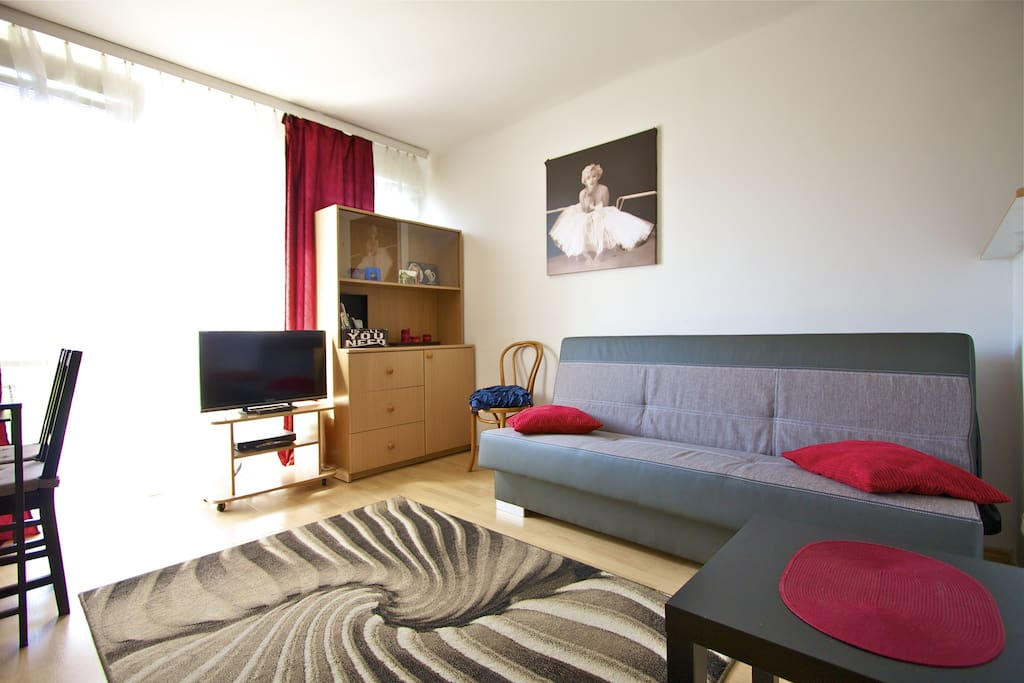 Whole appartment just for you and your friends.