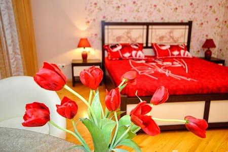 Красивая квартира в новом доме  - Saratov - Apartment