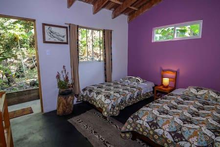 Cloud Forest Homestay Machupicchu 2