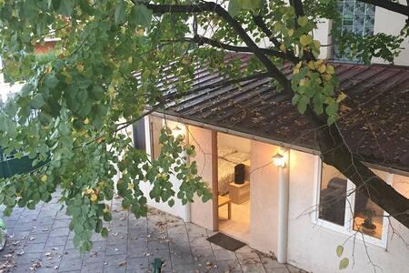 Joli T1 de 35 m2 avec terrasse - LYON - Byt