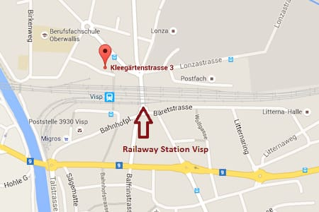 Liebevoll restaurierte Wohnung mit Rosengarten - Visp - Apartment