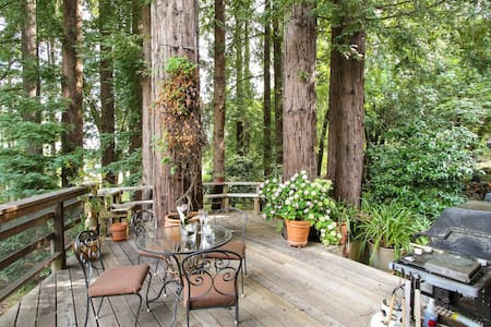 Shangrila in the Redwoods - Bed & Breakfast