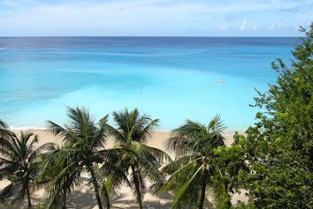 Mahi-Mahi Tropical Beach Villa - St. James - Villa
