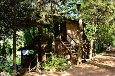 Cirali Homestay is a hideaway from the village situated in a forest with a large garden yet within easy reach to the beach, shops and restaurants.  Campers, hikers, and other nature-lovers can rent a TEEPEE, TREEHOUSE, ORIENTAL YURT or a CABIN