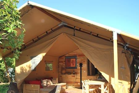 Eco Glamping in Safari tent, Cirali - Teltta