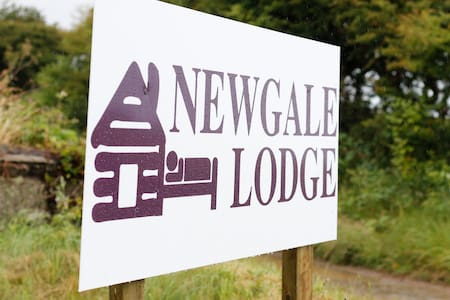 Newgale Lodge Bunk in Shared Room - Dorm