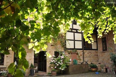 Erleben Sie die charmante Pfalz - Neustadt an der Weinstraße - Huis
