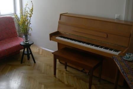 Room at Heart of Vienna - Wien - Wohnung