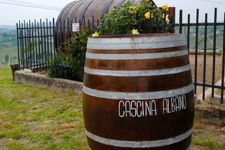 Room in the vineyards of Barbaresco - Barbaresco - House
