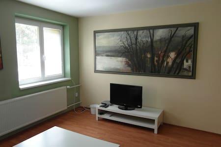 Calm part of Uherské Hradiště - Apartment