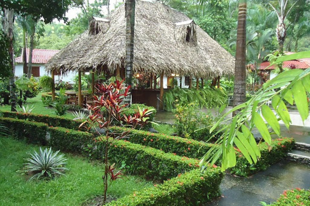 La Palapa - Rainforest Bungalow