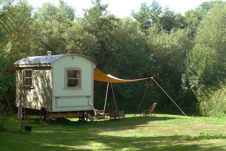 Beautiful Shepherds Hut - Zomerhuis/Cottage