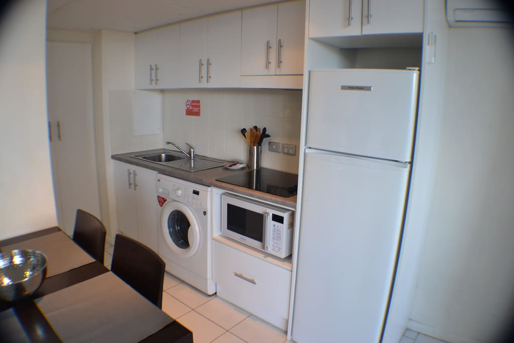 Attached Kitchen area with cook-top, microwave oven & washing machine, essentials.