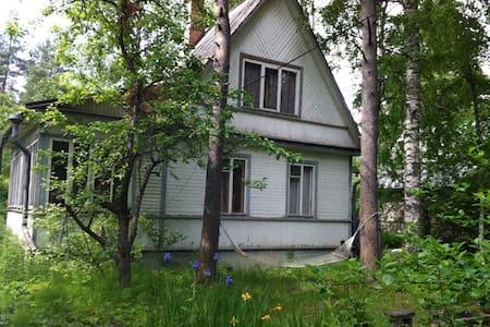 Отличный отдых в Белоострове - Белоостров