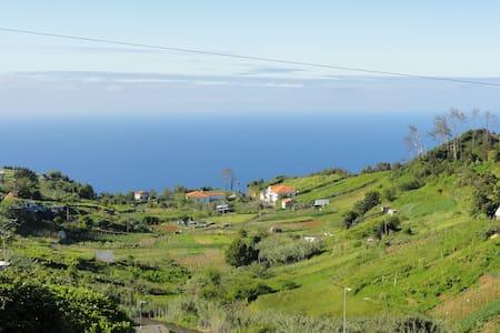Madeira Island Holidays - Santana