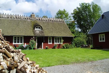 Lovely old cottage in the forest - Hytte