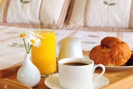 Manor Suite - Guest Room - Bed & Breakfast