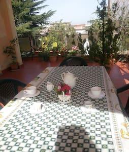 matrimoniale con terrazzo - Roma - Bed & Breakfast