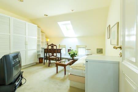 Helles Gästezimmer + Küche in Villa - Bonn