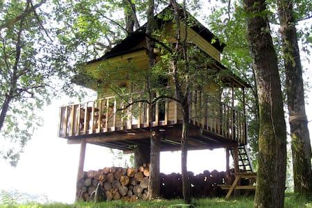 Nuit insolite dormir dans un arbre - Chatka