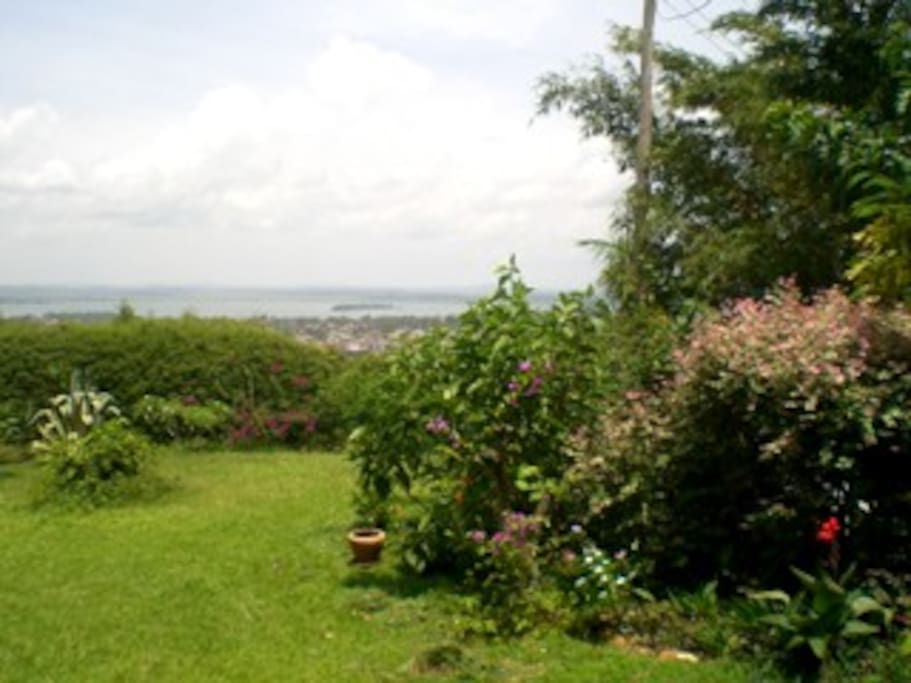 View of the lake and garden, right side behind the bushes  your private garden space