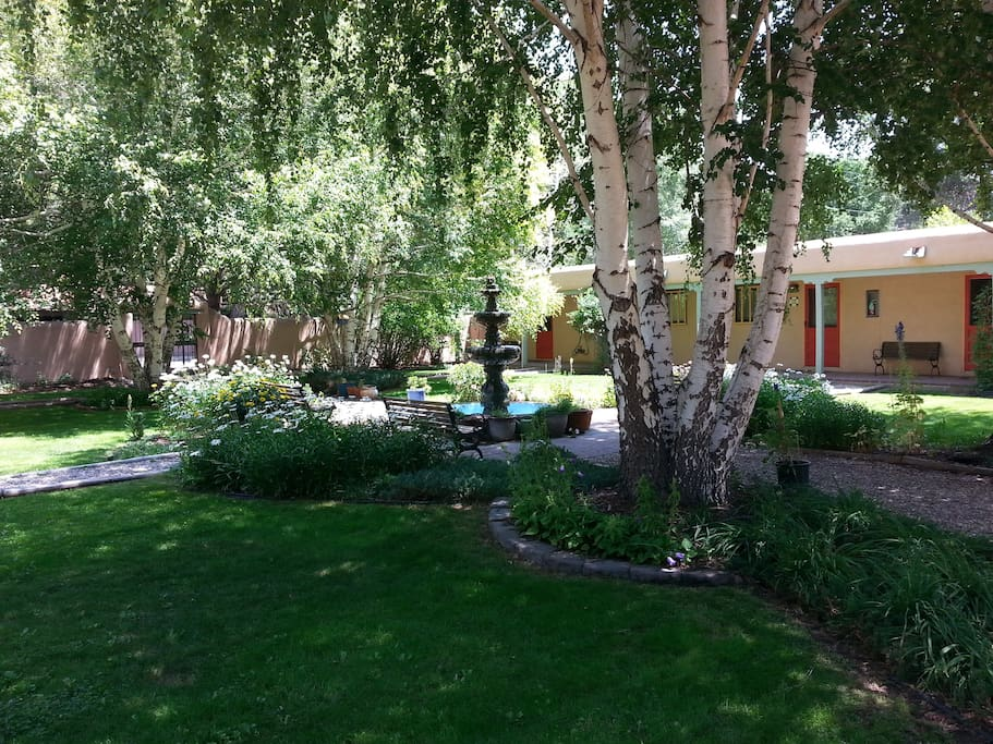 Shady and inviting shared courtyard
