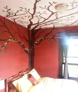 Buddha Tree Room