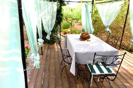 Villa 3700mq garden close beach - House