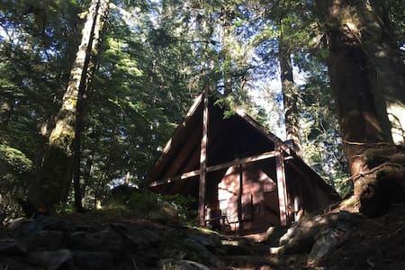 Cascade Creek Cabin - Sommerhus/hytte
