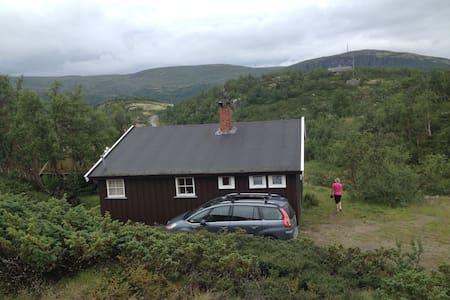 Ustaoset close to Hardandervidda - Blockhütte