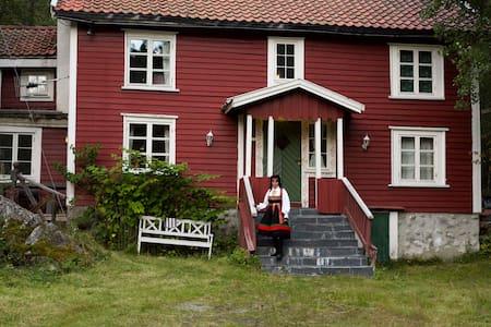 Setesdal Sørvest i Norge nær Hovden - Bykle
