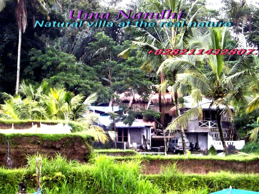 feel and experience of real Bali living at the traditional natural Bresela village